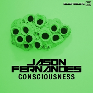 FERNANDES, Jason - Consciousness