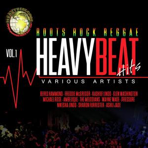 VARIOUS - HeavyBeat Hits Vol 1