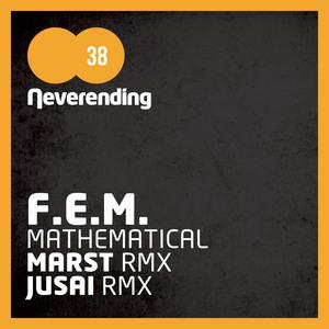 FEM - Mathematical