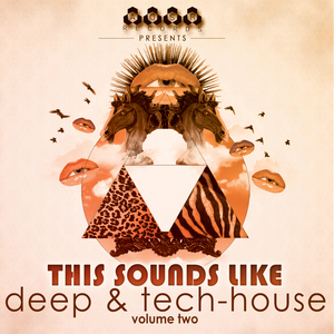 VARIOUS - This Sounds Like Deep & Tech-House Vol 2