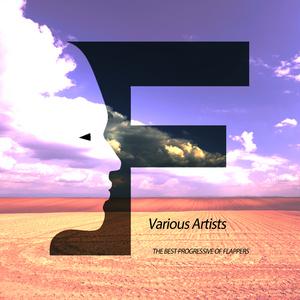 DIGITAL MESS - The Best Progressive Of Flappers