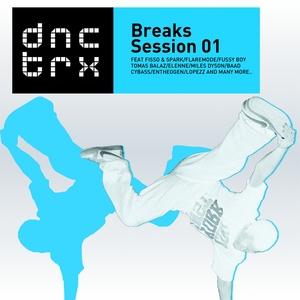 VARIOUS - Breaks Session 01