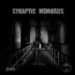 SYNAPTIC MEMORIES - Cold Spring