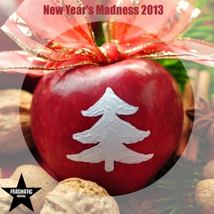 VARIOUS - New Year's Madness 2013