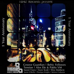 VARIOUS - 1642 Records Present: 1 Year Anniversary