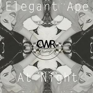 ELEGANT APE - At Night