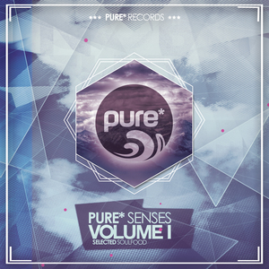 VARIOUS - Pure* Senses - Selected Soulfood Vol 1