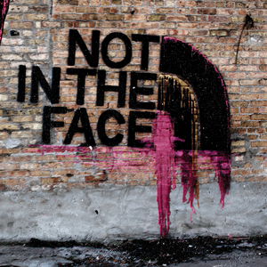 NOT IN THE FACE - Not In The Face