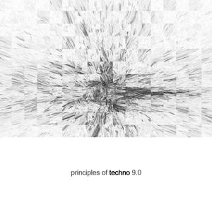 VARIOUS - Principles Of Techno Vol 9
