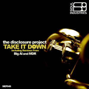DISCLOSURE PROJECT, The - Take It Down (remixes)