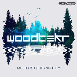 WOODTEKR - Methods Of Tranquility
