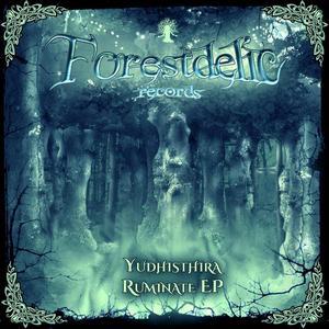YUDHISTHIRA - Ruminate EP