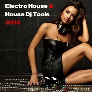 VARIOUS - Electro House & House DJ Tools 2013