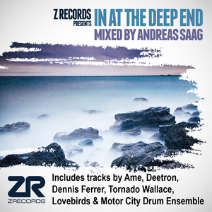 SAAG, Andreas/VARIOUS - In At The Deep End (mixed by Andreas Saag)