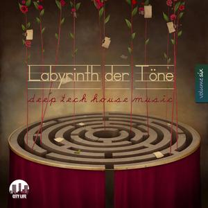 VARIOUS - Labyrinth Der Tone Vol 6: Deep & Tech House Music