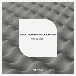 PICOTTO, Mauro/RICCARDO FERRI - Moonquake