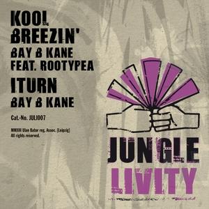 BAY B KANE feat ROOTYPEA - Kool Breezin'
