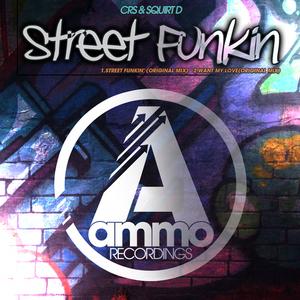 CRS/SQUIRT D - Street Funkin