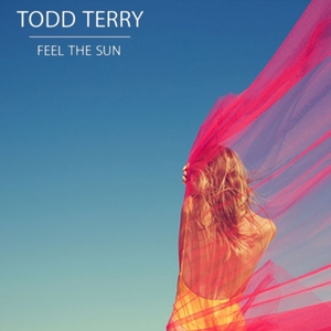 TERRY, Todd - Feel The Sun