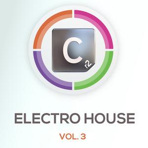 VARIOUS - Electro House Volume 3