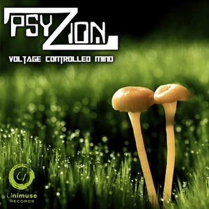 PSYZION - Voltage Controlled Mind