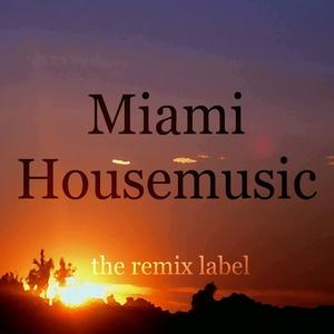 PADURARU, Cristian/VARIOUS - Miami Housemusic: Organic Deephouse Meets Vibrant Proghouse Tunes Compilation In Key D Plus The Paduraru Megamix Here