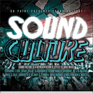 VARIOUS - Sound Culture