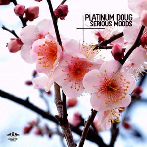PLATINUM DOUG - Serious Moods