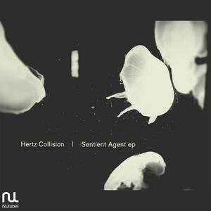 HERTZ COLLISION - Sentient Agent EP