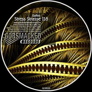 RAFTEK - Stress Strasse 118