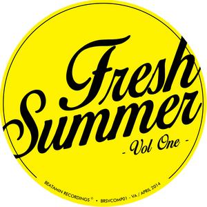 VARIOUS - Fresh Summer Vol 1