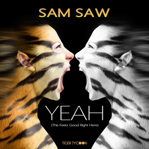 SAM SAW - Yeah (This Feels Good Right Here)
