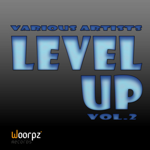 VARIOUS - Level Up Vol 2