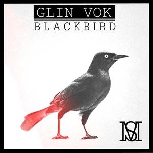VOK, Glin - Black Bird