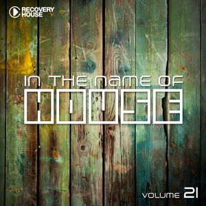 VARIOUS - In The Name Of House Vol 21