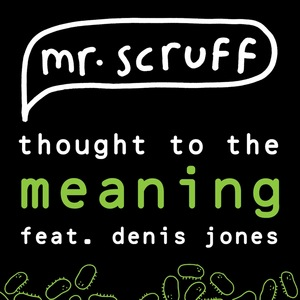 MR SCRUFF feat DENIS JONES - Thought To The Meaning