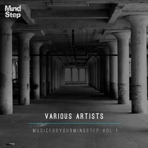VARIOUS - MusicForYourMindStep Vol 1