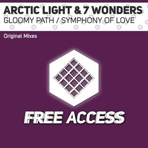 ARCTIC LIGHT/7 WONDERS - Gloomy Path