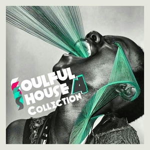 VARIOUS - Soulful House Collection Vol 2