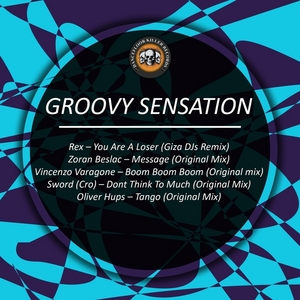 VARIOUS - Groovy Sensation