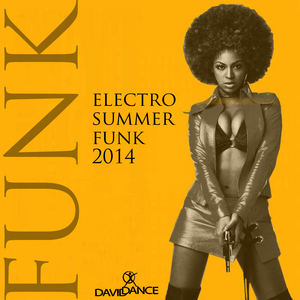 VARIOUS - Electro Summer Funk 2014