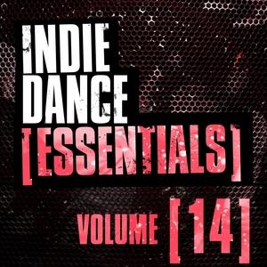 VARIOUS - Indie Dance Essentials Vol 14