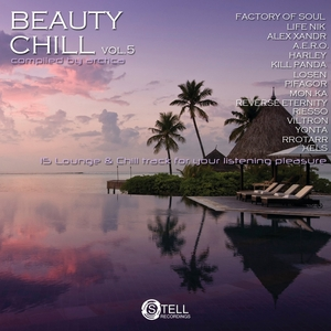 VARIOUS - Beauty Chill Vol 5