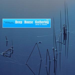 DEEPWERK/VARIOUS - Deep House Gathering