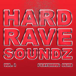 VARIOUS - Hard Rave Soundz, Vol  1