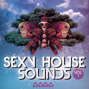 VARIOUS - Sexy House Sounds Vol 3