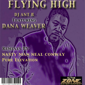DJ ANT B - Flying High