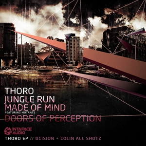 DCISION/COLIN ALL SHOTZ - Thoro EP