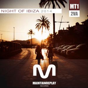VARIOUS - Night Of Ibiza 2014