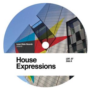 LEROSA/MARK DU MOSCH/MESCHI/AUTOMATIC TASTY - Lunar Disko presents House Expressions